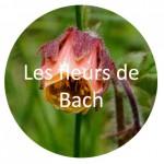 fleurs de bach médecine douce douleur chronique